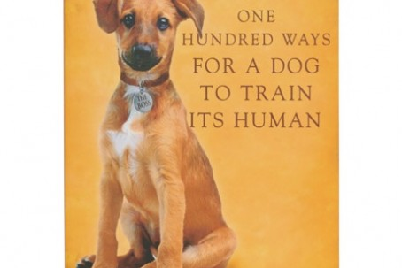 Ways For A Dog To Train Its Human