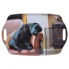 Sleeping Labrador Tray