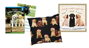 Dogalogue Guide Dogs Gift Shop