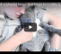 Watch This Little Koala Who Loves To Get His Belly Rubbed