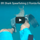 Spear Fisherman Catches Moment Of Shark Attack On Camera