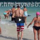 Shark shocks beachgoers in Florida