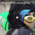 base jumping dog