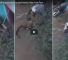 Watch This Dramatic Video Of A Man Fighting Off A Leopard