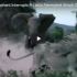 Mamma Elephant Defend Her Baby From A Hungry Lion