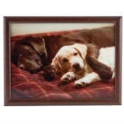 Chocolate and Yellow Lab Lap Tray